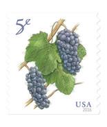 2016 5c Deep-Purple Pinot Noir Grapes, Coil Scott 5038 Mint F/VF NH - $0.99