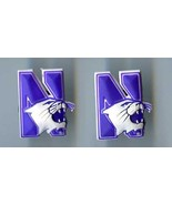 Crocs   ncaa northwestern wildcats thumbtall
