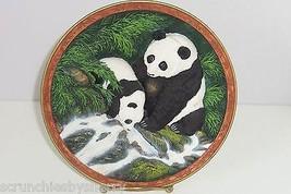 Panda Bear Collector Plate 3D Taste Life Vintage Bradford Exchange Will ... - $59.95