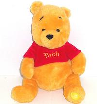 Disney Store Winnie Pooh Bear Plush Toy Baby Soft Patch Foot Stuffed Animal - $34.95