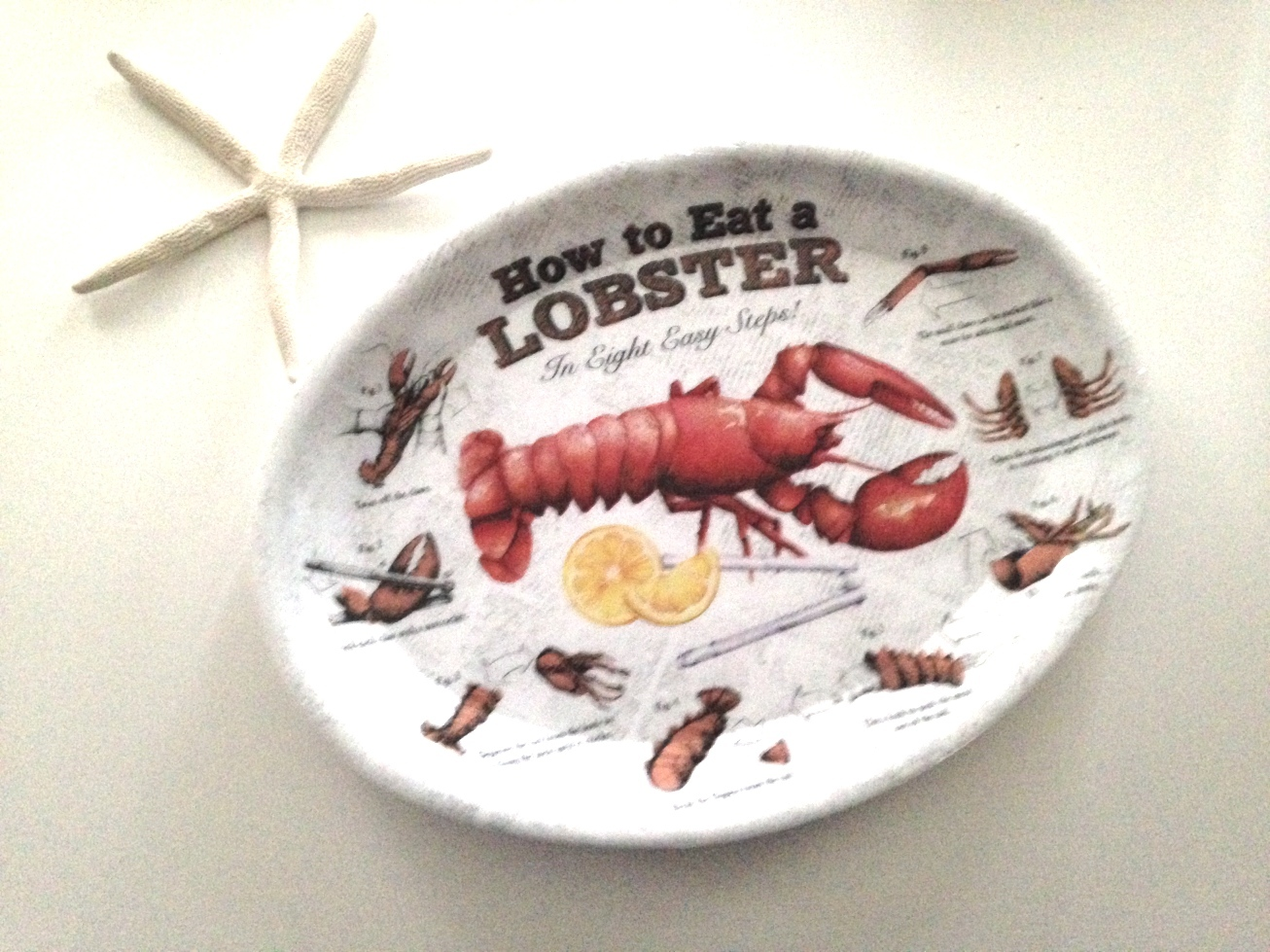 How to Eat Lobster Plates for clambakes, lobster bakes and festivals Set of 8