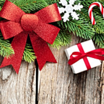 755x300 Pixels FREE Winter Holiday, or Christmas Banners-NO Avatars for ... - $0.00