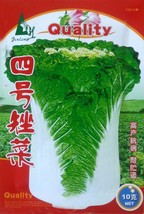 Vegetable Seeds Chinese Cabbage Seeds Northeast Chinese Weight 4kg 10g /... - $12.35