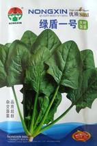 Vegetable Seeds Green Shield No. 1 Large Leaf Spinach Seeds Seasonal Spi... - $13.99