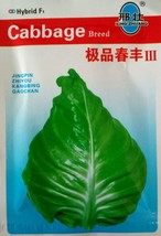 Vegetable Seeds Chunfeng Seeds Spring Cabbage Leaves Gray-green Leaf  10... - $28.99