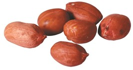 PEANUTS RAW RED SKIN, 5LBS - $19.79