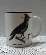 Vintage Stoneware H&M Bird Coffee Mug Alanda Cristata Crested Lark Cup - $8.00