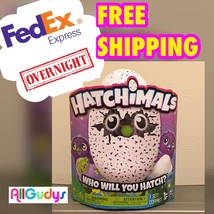 NEW Hatchimals DRAGGLES Purple Egg ** NEXT DAY DELIVERY ** - $346.49
