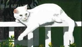 Cat Magnet #65 - $6.99