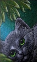 Cat Magnet #73 - $6.99