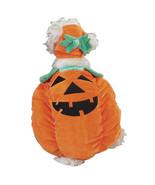 Pumpkin Pooch Dog Halloween Costume Pet costumes XS-XL Zack & Zoey - $19.99