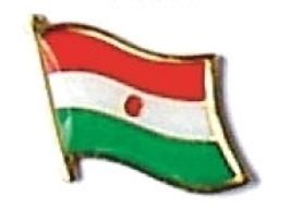 NIGER - Wholesale lot of 12 flag hat lapel pins ef170 - $18.00