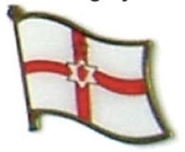 NORTH IRELAND - Wholesale lot 12 flag lapel pins ef113 - $18.00