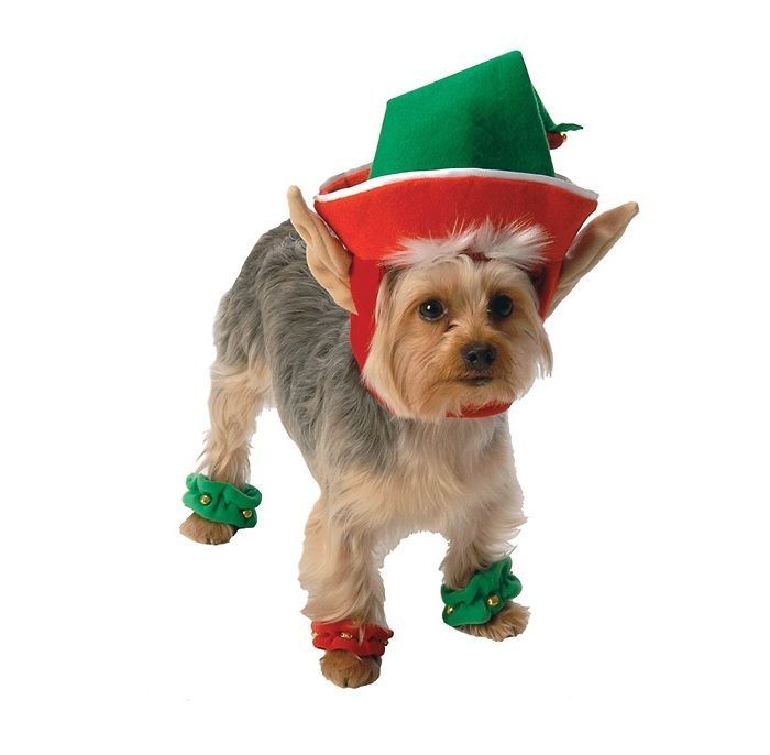 Holiday Elf Costume for Dogs - XS - S - M - 1 headpiece & 4 leg cuffs