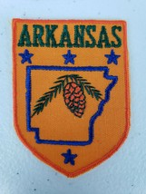 Vintage Voyager Brand State Of ARKANSAS Orange Pine Cone Souvenir Patch - $4.99