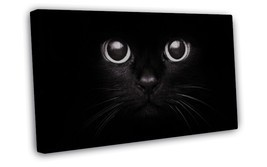 Cute Black Cat Baby Art 16x12 FRAMED CANVAS Print Decor - $29.95