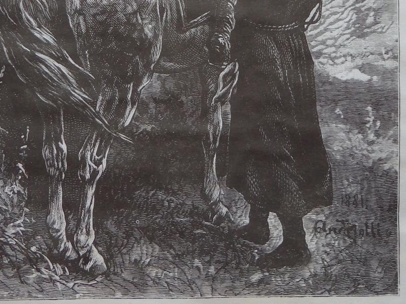 Horse, Genre scene, Old Art print, Steel engraving, Reprint, Book illustration