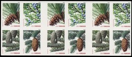 4481d, Die Cutting Omitted ERROR Pane of Evergreen Stamps - Stuart Katz - $625.00