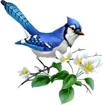 Majestic Blue Jay Cross Stitch Pattern***LOOK*** - $4.95