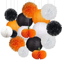 18Pcs Party Pack Paper Lanterns and Pom Pom Balls Hanging Decoration for... - $15.83