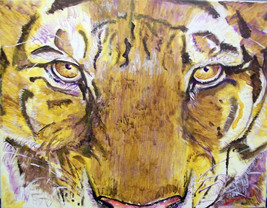 ORIGINAL ACEO Tiger Art Print  -: rdoward fine art - $5.94