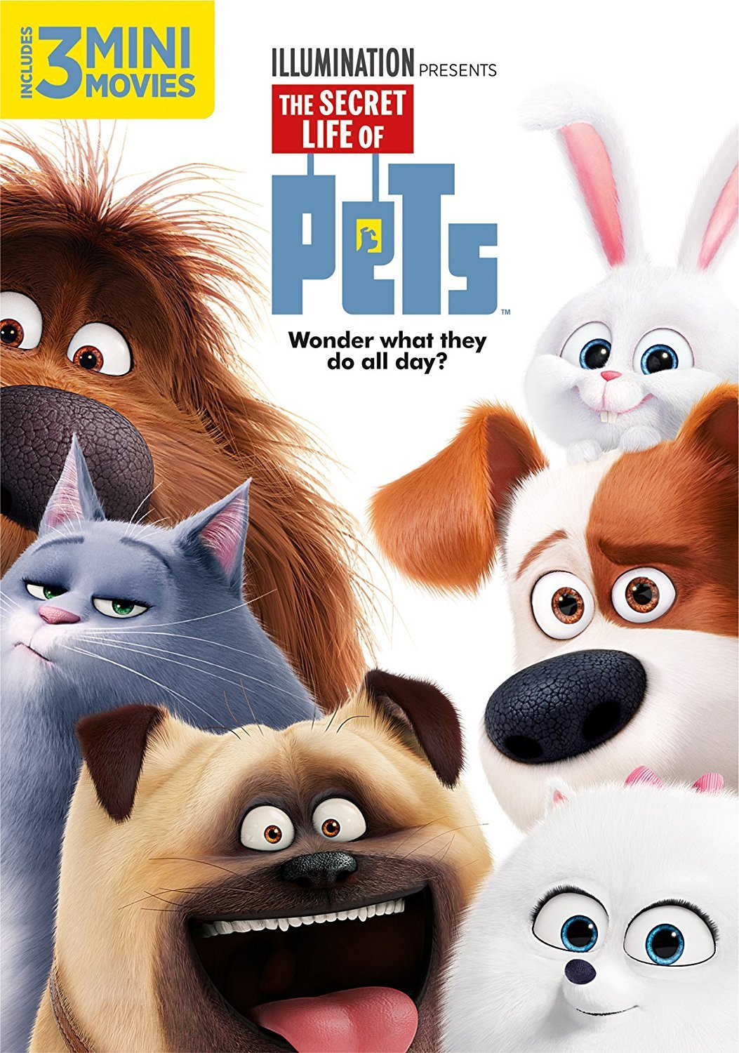 The Secret Life of Pets [2016, DVD]