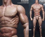 """1/6 Scale Action Figure Male Nude Muscular Body 12 Plastic Toy for TTM18/19"""""""