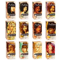Shea Moisture Hair Color System Kit Permanent Gray Coverage Nourish No Ammonia - $19.95