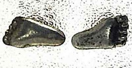 LOOK Foot feet prints Sterling Silver Stud Earring Jewelry - $19.34