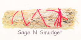 SAGE SACRED FEATHER SAGE SPIRIT REMOVAL HOUSE CLEANSING NATIVE SMUDGE - $20.00