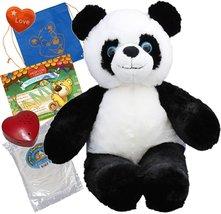 "Panda Bear (16"" Plush) w/Heart shaped Voice recorder (No-Sew DIY Build-a... - $24.30"