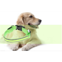 Pet Safety Collar LED Flashing Night Walking Green - $12.99
