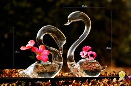 2pcs Loving Romantic Swans Glass Vase for Plants!  - $30.90