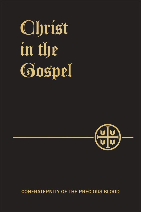 Christ in the gospel pb8391x