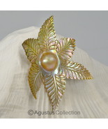 MABE Blister PEARL in SHELL Lustrous Rainbow Ir... - $53.54