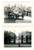 Jackson Square & Horse Drawn Carriage Aunt Sally's Photos New Orleans Lo... - $27.69