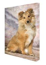 Border Collie Dog Canvas 18 x 24 - $98.01