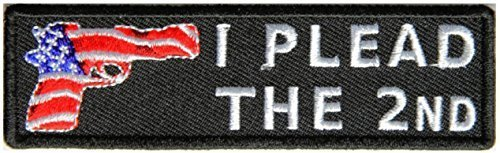 I Plead The 2nd Patch - 4x1.2 inch