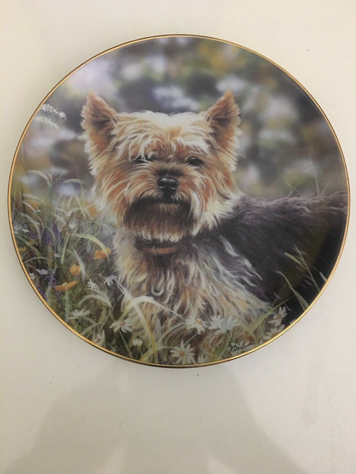 Primary image for Gorgeous LITTLE CHARMER Plate Yorkshire Terriers Danbury Mint Yorkie Floral