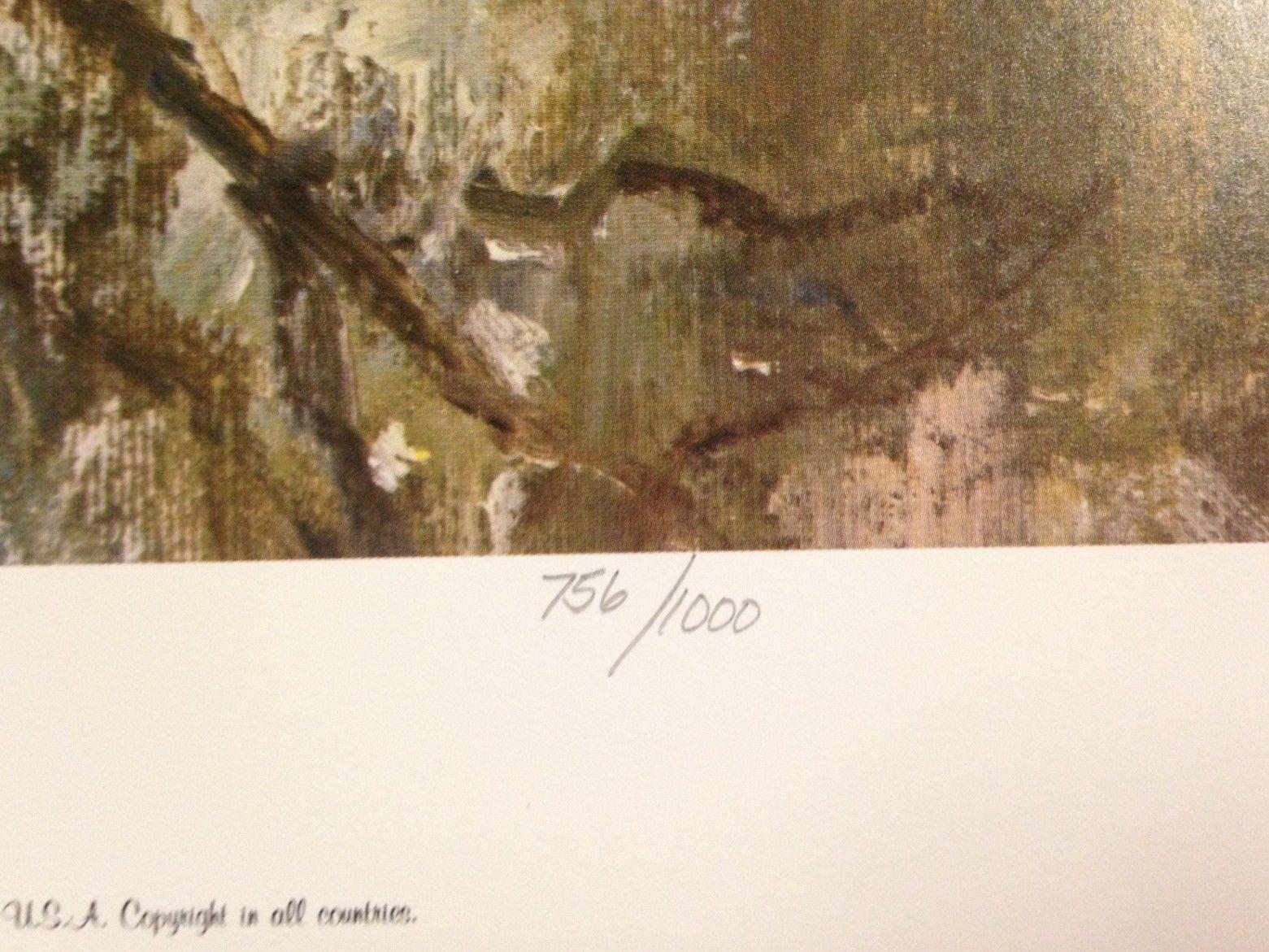 Beaver's Haunt by Richard Thompson