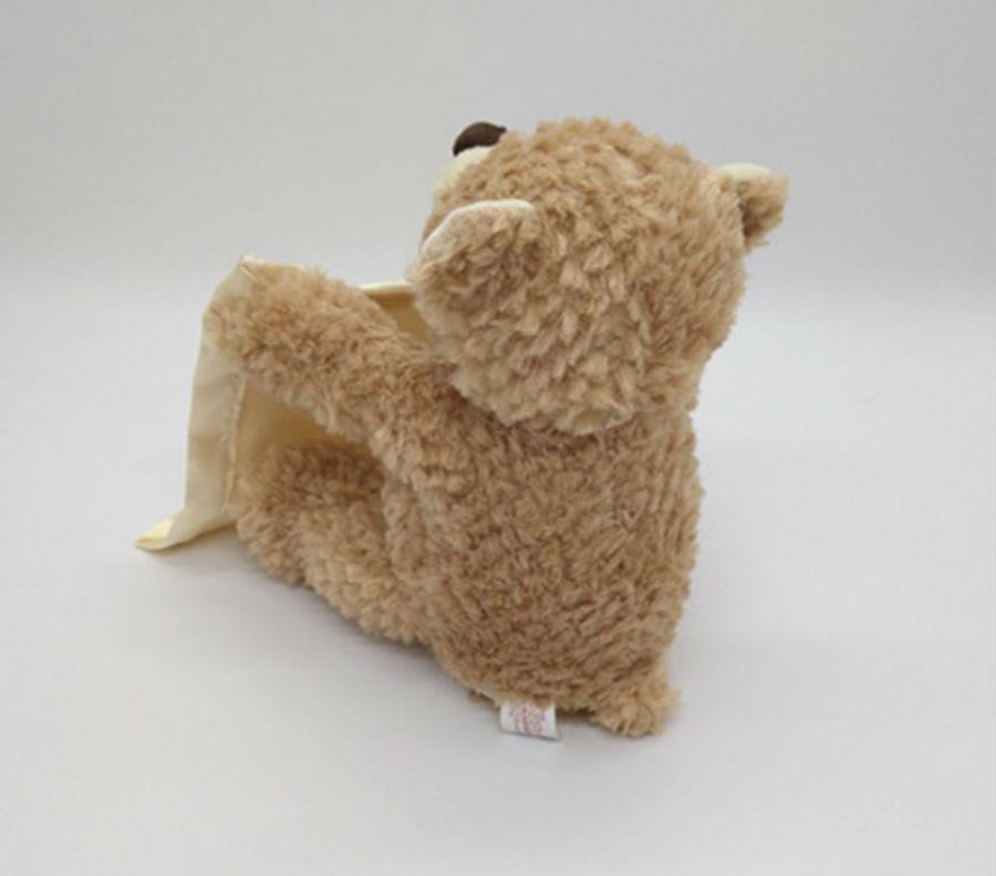 Teddy Bear Peek A Boo Play Hide And Seek Lovely Cartoon Birthday Perfect Gift
