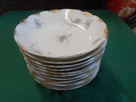 Beautiful Ch Field Haviland Limoges-France....Set Of 10 Berry Bowls - $64.93