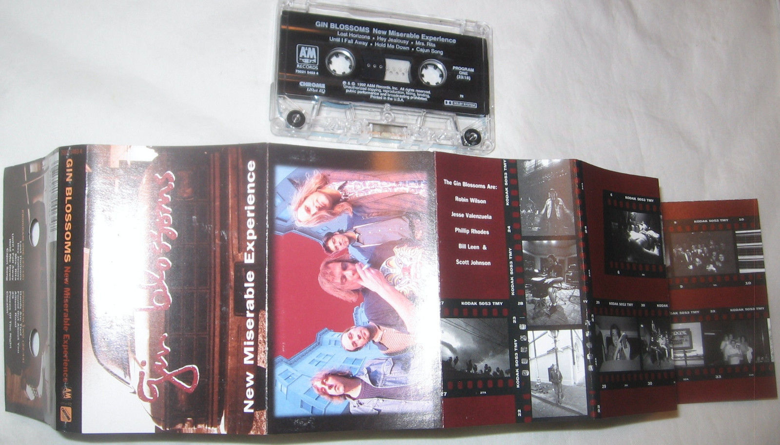 New Miserable Experience by Gin Blossoms Cassette Aug-1992 Pop-u.s Free Ship USA