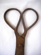 Antique Primitive Rare Wrought Iron Large Scissors, 18tn century - $42.00
