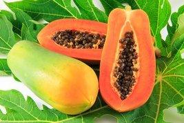 Body Scrub Slice Of Nature Papaya Fruit Extract Facial Mask 5 oz Misc. - $36.45