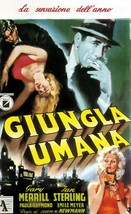 The Human Jungle Movie POSTER (1954) Crime - $6.91+