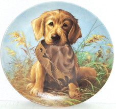 Golden Retriever Collector Plate Caught Act Vintage 1987 United Kennel Club - $59.95