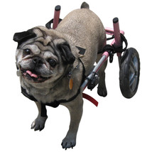 Dog Wheelchair - For Small Dogs 18-25 lbs - Veterinarian Approved  18-25... - $297.89 CAD