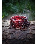 Vampire Beauty Bracelet Blood-red Garnets Haunt... - $31.99