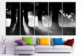 "XLARGE 30""x 70"" 5 Panels Art Canvas Print Morning sun rays nature tree f... - $139.00"
